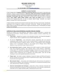 Resume Examples For It Professionals Resume Samples For Banking ...