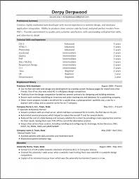 Web Developer Resume Best It Web Developer Resume Example