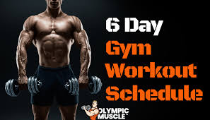 6 Day Gym Workout Schedule Full Guide Olympic Muscle