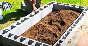 a cinder block raised garden bed