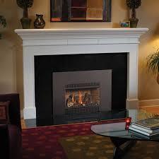 31 dvi gas fireplace insert