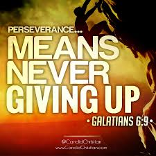 Christian Perseverance Quotes Best of Perseverance Means Never Giving Up Candid Christian