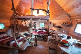 Cabanes Dans Les Arbres Alsace