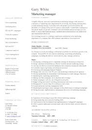 Account Manager Resume Objective Best of Marketing Manager Resume Examples Product Marketing Manager Resume