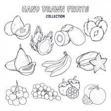Disegno Da Colorare Frutta Scaricare Vettori Gratis
