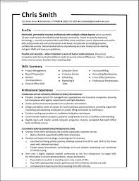 Resume Samples Functional Format Free Resume Samples An Effective