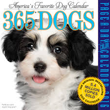 Small Picture 365 Dogs Color Page A Day Calendar 2016 Workman Publishing