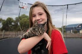 Cat found after 70km trip in rubbish skip   Melton & Moorabool