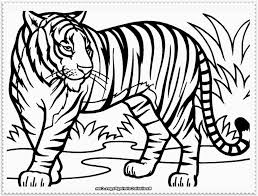 Small Picture Tiger Drawing For Children Tiger Coloring Page Only Coloring Pages