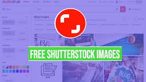 Free Shutterstock Images Shutterstock Images Without Watermark Hd Quality