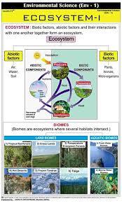 Jagruti Ecosystem Educational Charts Wall Hanging Poster Chart
