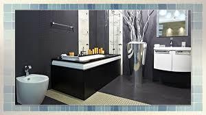 Bathroom Remodeling Books Mesmerizing Professional Bathroom Renovations Bathroom Renovations Designs
