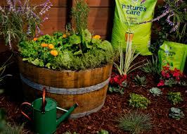 barrel garden. Whiskey Barrel | The Home Depot\u0027s Garden Club