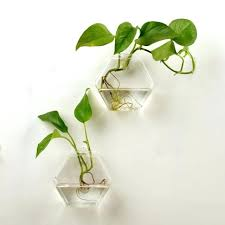 faceted hanging terrarium inspired by urban outfitters faceted hanging terrarium home ideas philippines