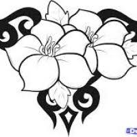 Small Picture Cool Flower Patterns Flowers Ideas For Review