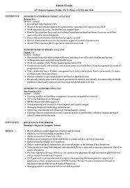 Support Analyst Senior Support Analyst Resume Samples Velvet Jobs