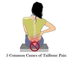 5 Common Causes Of Tailbone Pain Inspiring Meme