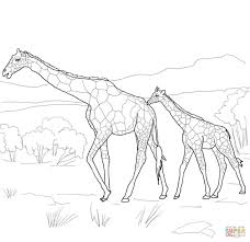Small Picture Coloring Pages Animals Pages Ppinewsco Bestofcoloringcom Giraffe