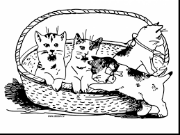 Small Picture beautiful dog and cat coloring pages with kittens coloring pages