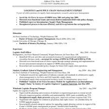 Ceo Chief Executive Officer Resume Format Image Examples