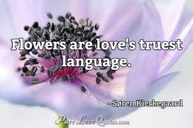 Love Flower Quotes Impressive Flowers Are Love's Truest Language PureLoveQuotes