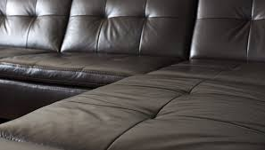leather isn t a good climbing surface for bed bugs