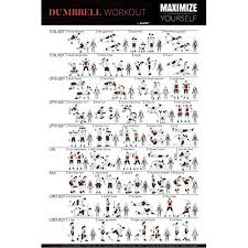 Body Fitness Chart Bltzpro Exercise Fitness Poster Full Body Workout A