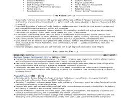 Business Owner Resume Sample Transform Resume Examples For Salon Owners About Business Owner 54