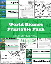 96 best Rainforest images on Pinterest | Geography, Teaching ...