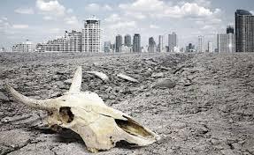 Resultado de imagen para extinción masiva
