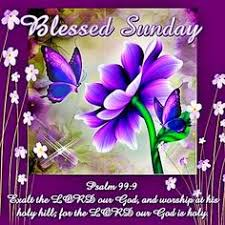 Blessed Sunday Quotes Simple Pin By Regina On Good Saturday Morning Pinterest Blessed Quotes
