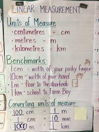 Ruler Anchor Chart Ms Ferrarottos Grade 3 Class January 2018