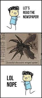 winged spiders via Relatably.com