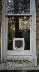 staywell deluxe manual cat flap in laminated glass window