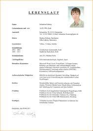 5 Lebenslauf Schreiben Beispiel Reimbursement Format
