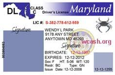 Maryland Drivers Photoshop Template License