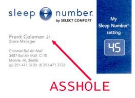 select comfort logo. sleepnumber select comfort logo