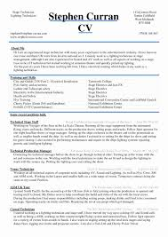 Professional Resume Format In Word Professional Resume Samples In Word Format Ownforum Org