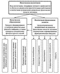Основные понятия физического воспитания Физическое воспитание