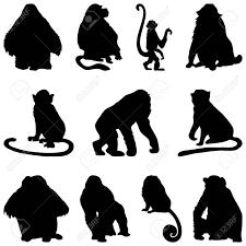 猿のシルエットのコレクションですベクトル イラスト