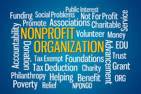Not For Profit Definition