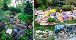 small rock gardens large size of home garden best plants for landscaping