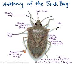Bugs I - Hate Stink So Imgur Much