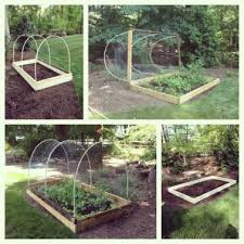 deer proof garden. Deer Proof Garden 31
