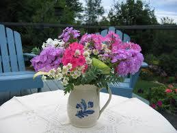 perennials for cut flowers flowers