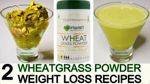wheatgr powder for weight loss