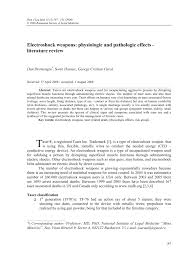 Example Of Essay Report Interim Report Example Essay Coursework Sample