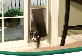 best cat doors cat door for sliding glass door on brilliant home design style with cat