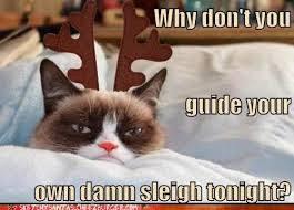 Memes Vault Grumpy Cat Memes for Christmas via Relatably.com