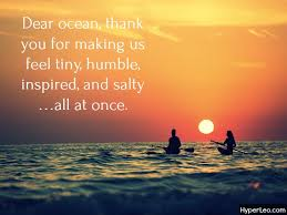 Ocean Quotes Cool 48 Cute Beach Quotes Quotes About Ocean [With Images]